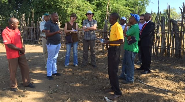 In Tete district, Mozambique, interacting with Innovation Platform farmers.