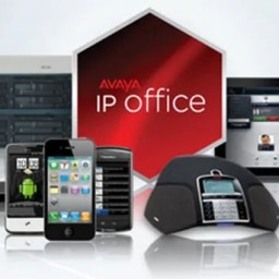 Avaya IP Office group