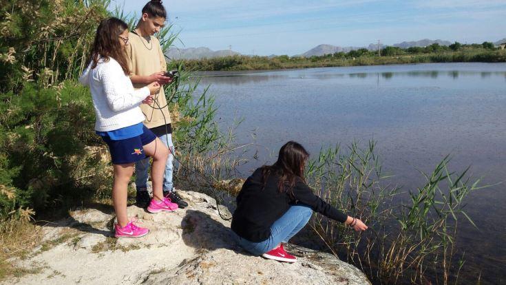 Grup d'alumnes de secundària de l'IES Port d'Alcúdia en tasques de seguiment i observació d'aus a la llacuna de Maristany.