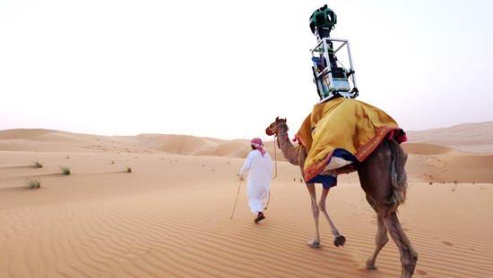 google_camel