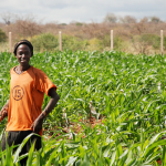 How We Can Excite Youth By Using ICT in Agriculture