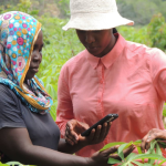6 Reasons to Join TechChange Course on Agriculture, Innovation, and Technology