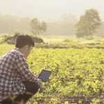 What Southeast Asian ICTforAg Solution Providers Need for Success