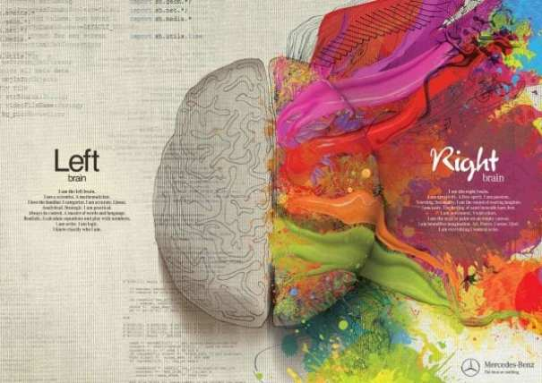 Which part of brain are you?
