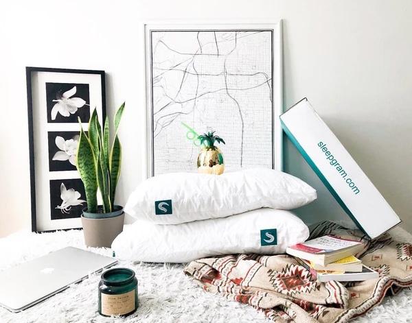 sleepgram pillow 2021