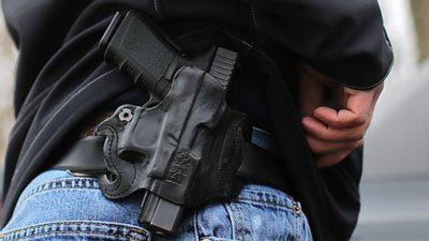 Stop Government Gun Lockups - H.R. 130!