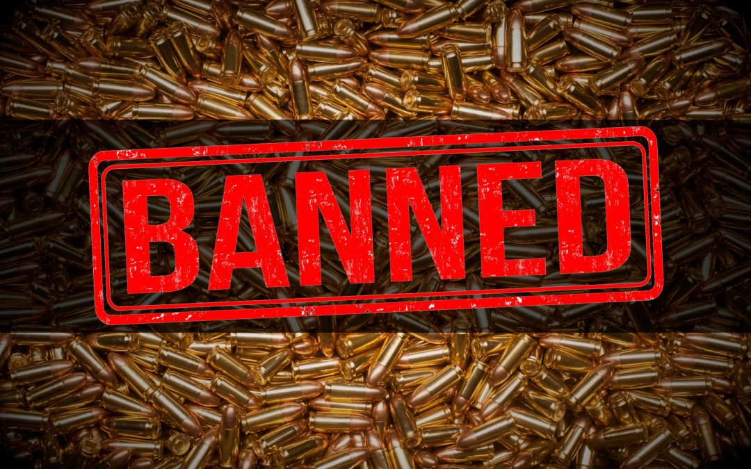 ⚠️Massive Gun Control Bill Filed!⚠️