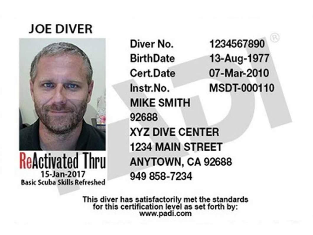 Padi Dive Card Lookup Gemescool