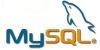 php mysql 100x50