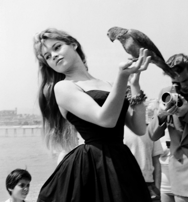 THE 50s IN FASHION PHOTOGRAPHY IDEALIST STYLE