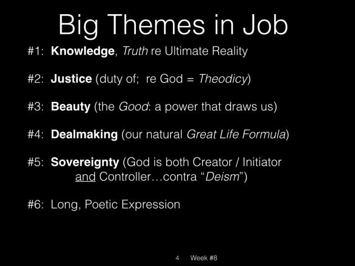 Book of Job, Raz, Week #8.004