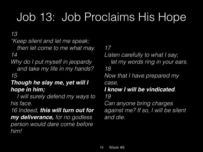 Book of Job, Raz, Week #8.018