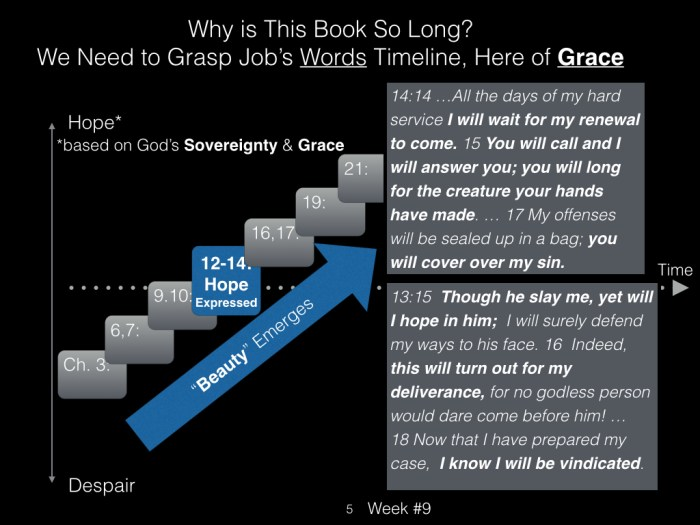 Book of Job, Raz, Week #9.005