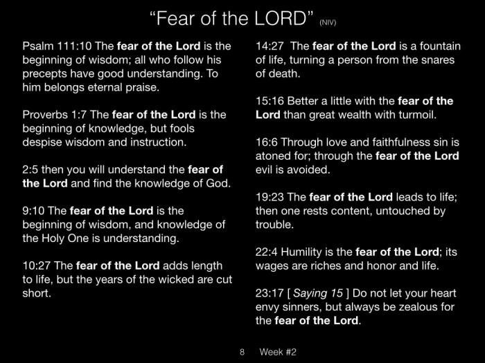 Book of Job, Week #2 LB.008