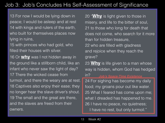 Book of Job, Week #2 LB.013