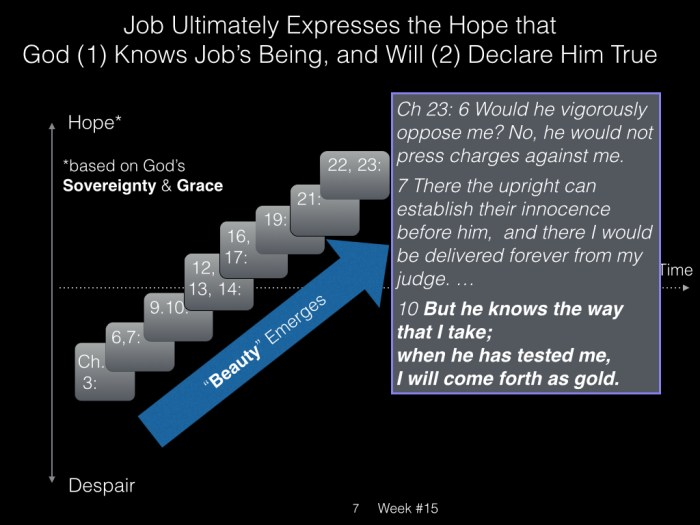 Book of Job, Raz, Week #15.007