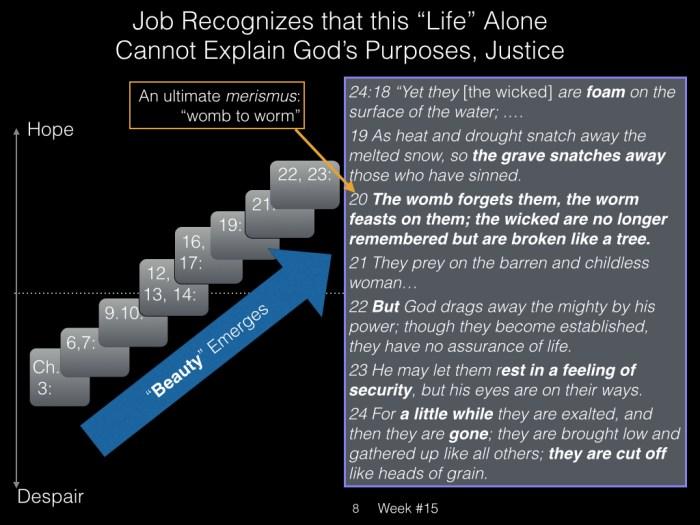 Book of Job, Raz, Week #15.008