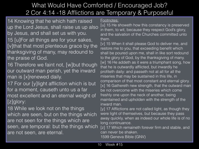 Book of Job, Raz, Week #15.010