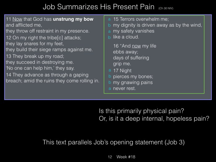 Book of Job, Raz, Week #18.012