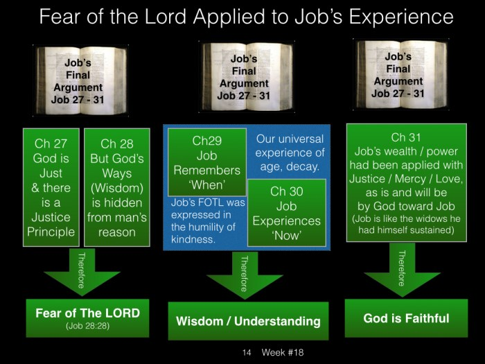 Book of Job, Raz, Week #18.014