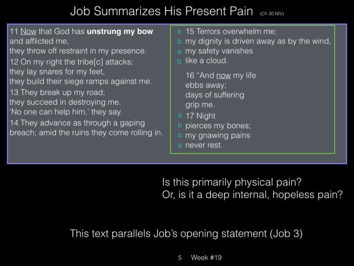 Book of Job, Raz, Week #19.005