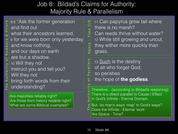 Book of Job, Week #8 LB .010