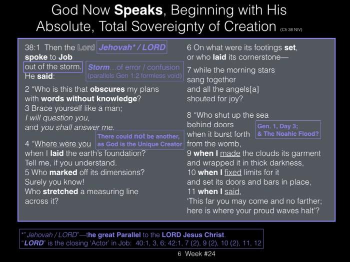 Book of Job, Raz, Week #24.006