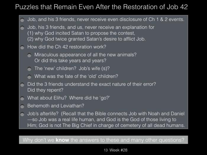 Book of Job, Raz, Week #28.013