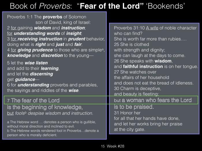 Book of Job, Raz, Week #28.015