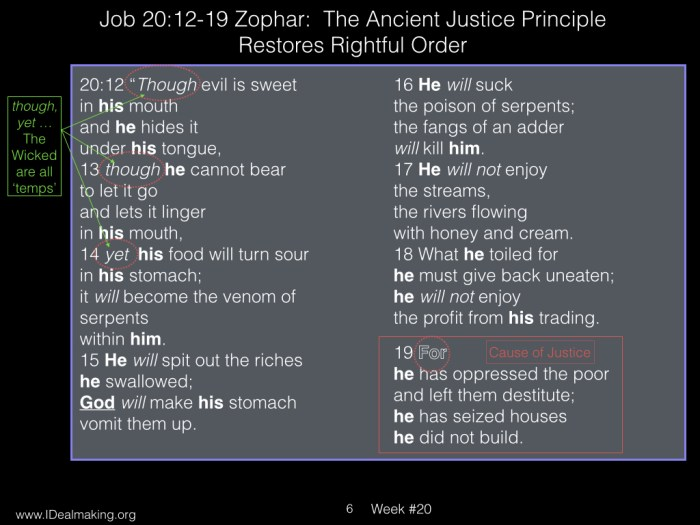 Book of Job, Week #20 LB.006