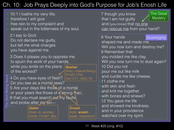 Book of Job, Week #25 LB.011