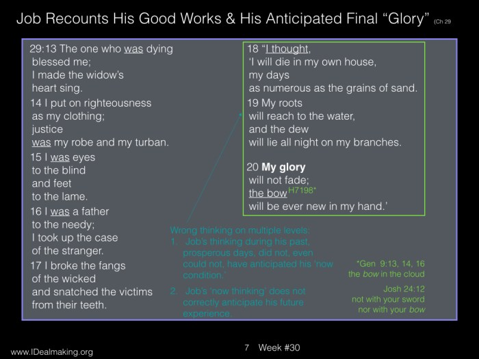 Book of Job, Week #30 LB.007