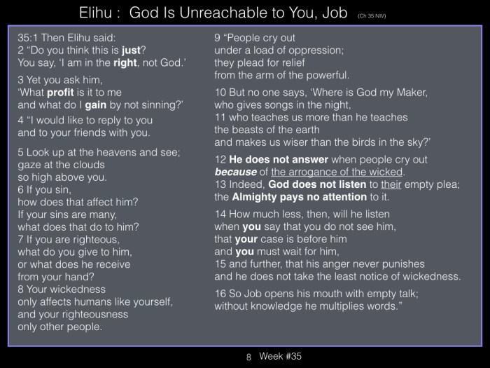 Book of Job, Week #35 LB.008