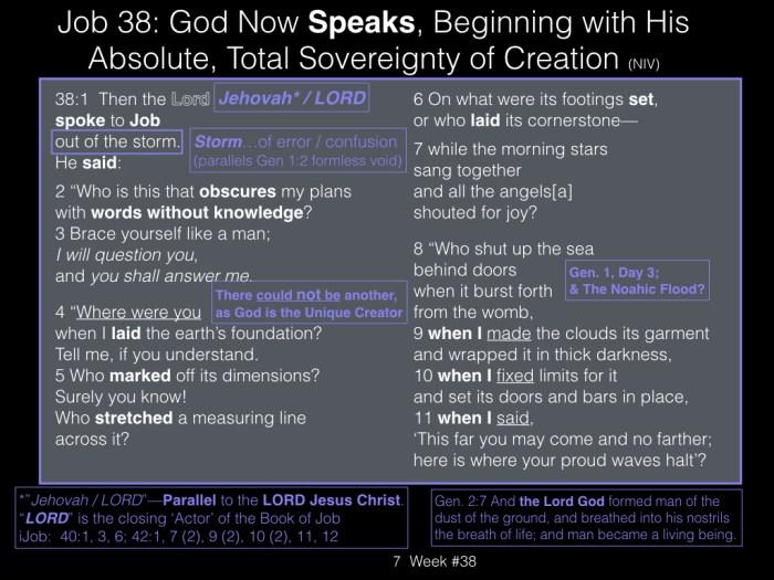 Book of Job, Week #38.007