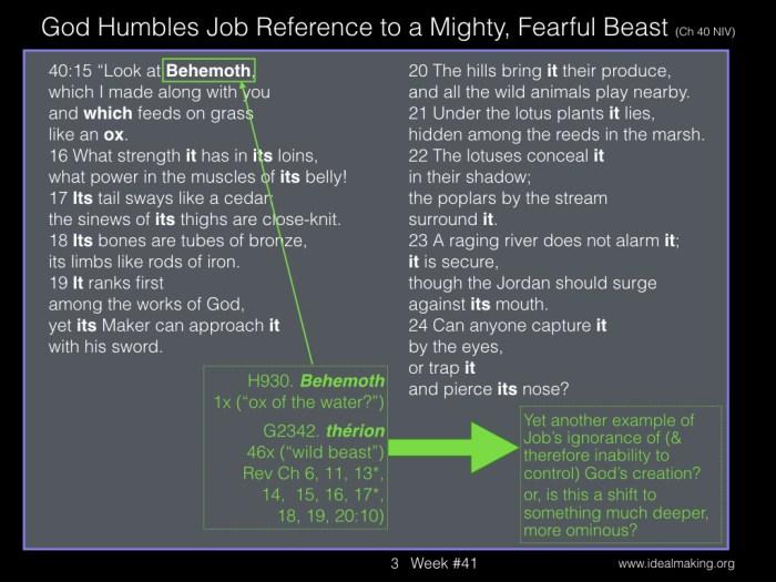 Book of Job, Week #41 JPEGs.003