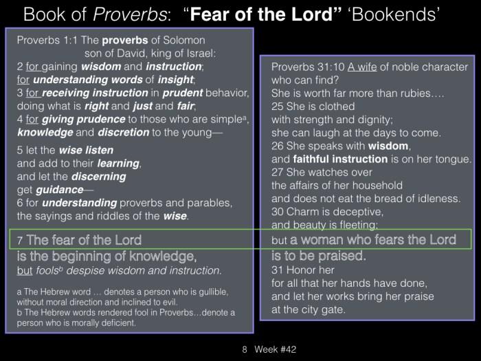 Book of Job, Week #42.008
