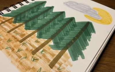 Draw a Forest
