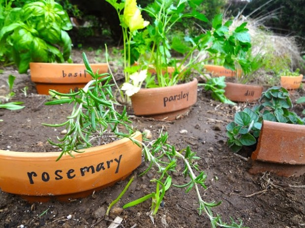Broken-Pot-Plant-Markers
