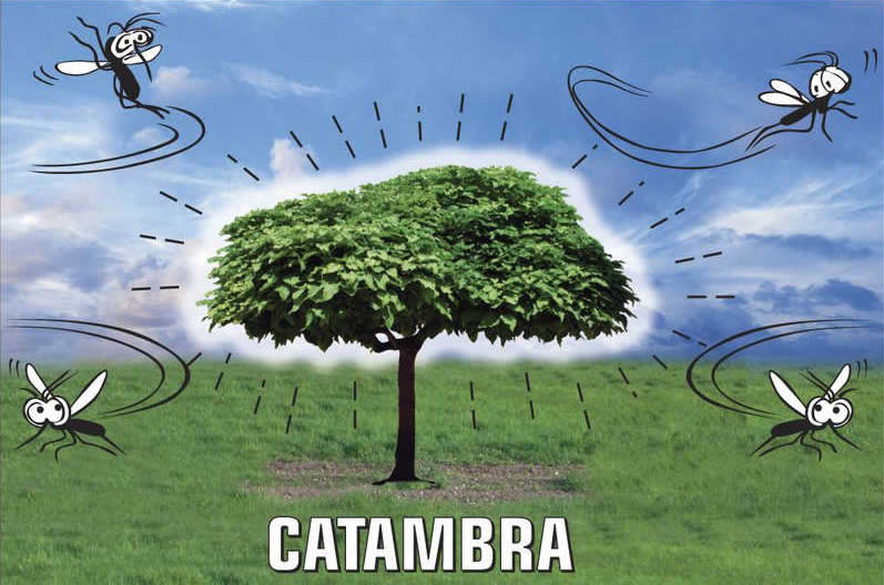 catambra anti zanzare