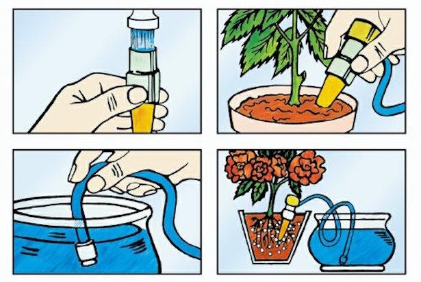 Irrigazione Delle Piante Durante Le Vacanze Idee Green