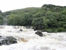 ideenkind | River Glen