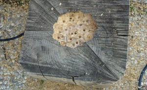 fare una base di legno per il porta vasi