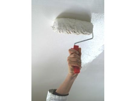 Comment Repeindre Son Plafond Decoration Ideesmaison Com