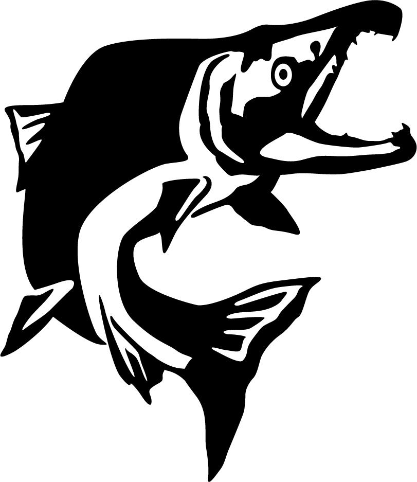 Sockeye Salmon Jump Wall Decal (811 x 937 Pixel)