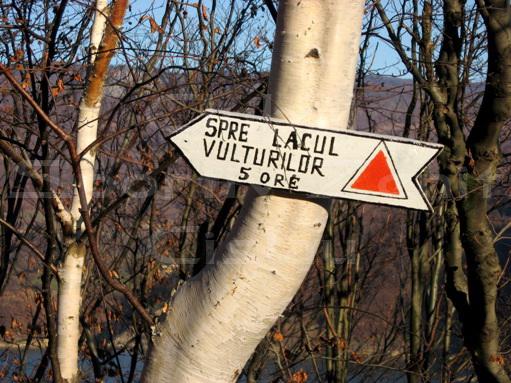 indicator_turistic_zenit_cislau_buzau