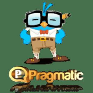 PragmaticWebDesigner.com for Web Designer