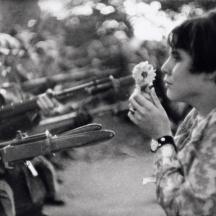 Flower war Jan Rose Kasmir - French photographer Marc Riboud