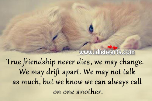 Image result for TRUE FRIENDSHIP NEVER DIES""