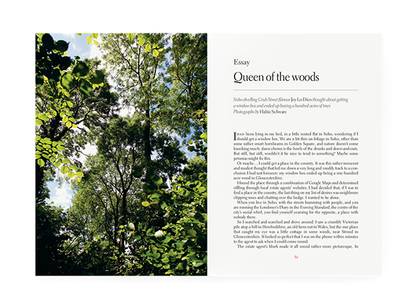 subs-spread_issue52-queenofwoods