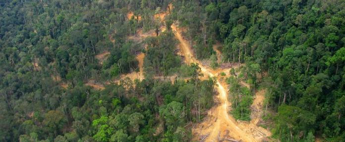 Towards Inclusive Natural Resource Management In Indonesia Idlo International Development Law Organization